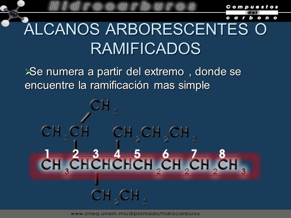 ALCANOS ARBORESCENTES O RAMIFICADOS Se numera a partir del extremo, donde se encuentre la ramificación mas simple Se numera a partir del extremo, dond