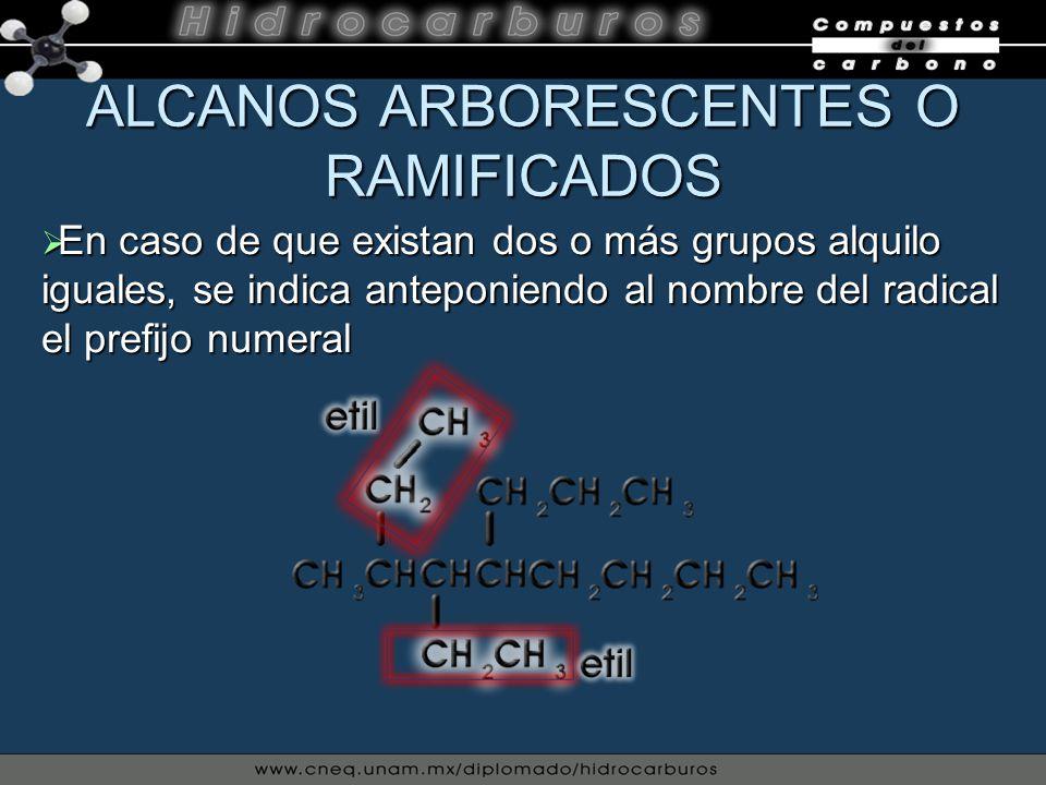 ALCANOS ARBORESCENTES O RAMIFICADOS En caso de que existan dos o más grupos alquilo iguales, se indica anteponiendo al nombre del radical el prefijo n