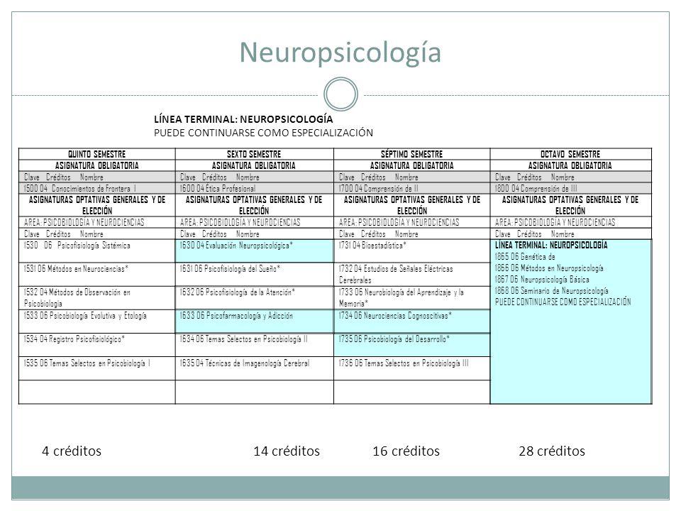 Neuropsicología QUINTO SEMESTRESEXTO SEMESTRESÉPTIMO SEMESTREOCTAVO SEMESTRE ASIGNATURA OBLIGATORIA Clave Créditos Nombre 1500 04 Conocimientos de Frontera I1600 04 Ética Profesional1700 04 Comprensión de II1800 04 Comprensión de III ASIGNATURAS OPTATIVAS GENERALES Y DE ELECCIÓN AREA: PSICOBIOLOGÍA Y NEUROCIENCIAS Clave Créditos Nombre 1530 06 Psicofisiología Sistémica1630 04 Evaluación Neuropsicológica*1731 04 Bioestadística* LÍNEA TERMINAL: NEUROPSICOLOGÍA 1865 06 Genética de 1866 06 Métodos en Neuropsicología 1867 06 Neuropsicología Básica 1868 06 Seminario de Neuropsicología PUEDE CONTINUARSE COMO ESPECIALIZACIÓN 1531 06 Métodos en Neurociencias*1631 06 Psicofisiología del Sueño*1732 04 Estudios de Señales Eléctricas Cerebrales 1532 04 Métodos de Observación en Psicobiologia 1632 06 Psicofisiología de la Atención*1733 06 Neurobiología del Aprendizaje y la Memoria* 1533 06 Psicobiología Evolutiva y Etología1633 06 Psicofarmacología y Adicción1734 06 Neurociencias Cognoscitivas* 1534 04 Registro Psicofisiológico*1634 06 Temas Selectos en Psicobiología II1735 06 Psicobiología del Desarrollo* 1535 06 Temas Selectos en Psicobiología I1635 04 Técnicas de Imagenología Cerebral1736 06 Temas Selectos en Psicobiología III LÍNEA TERMINAL: NEUROPSICOLOGÍA PUEDE CONTINUARSE COMO ESPECIALIZACIÓN 4 créditos 14 créditos 16 créditos 28 créditos