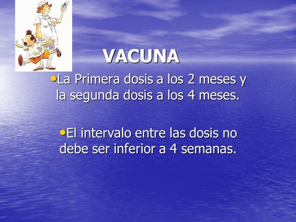 VACUNA La Primera dosis a los 2 meses y la segunda dosis a los 4 meses.