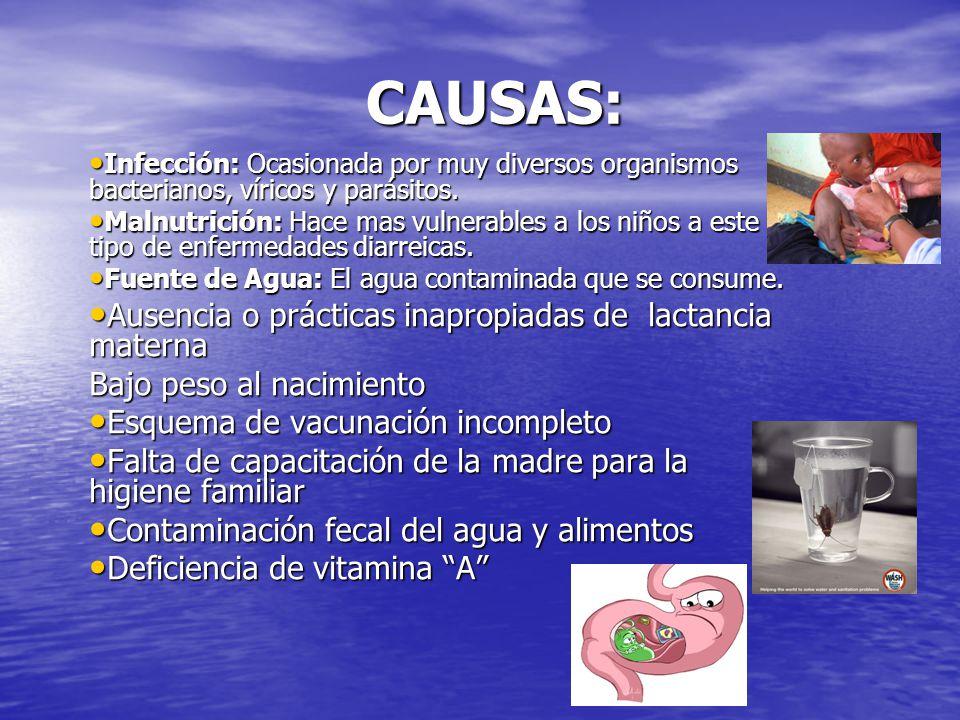 CAUSAS: Infección: Ocasionada por muy diversos organismos bacterianos, víricos y parásitos.
