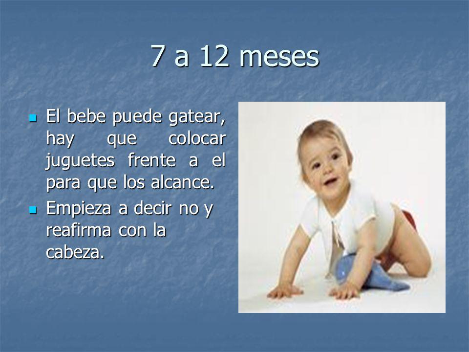 7 a 12 meses El bebe puede gatear, hay que colocar juguetes frente a el para que los alcance. El bebe puede gatear, hay que colocar juguetes frente a