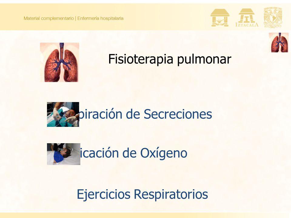 Fisioterapia pulmonar Aspiración de Secreciones Aplicación de Oxígeno Ejercicios Respiratorios