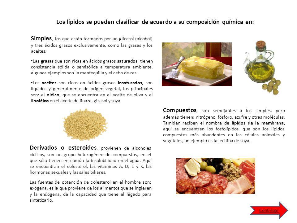 Simples, los que están formados por un glicerol (alcohol) y tres ácidos grasos exclusivamente, como las grasas y los aceites.