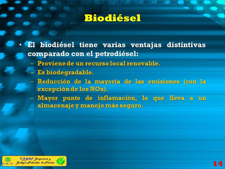 UBBMP Bioquímica y Biología Molecular de Plantas Biodiésel El biodiésel tiene varias ventajas distintivas comparado con el petrodiésel:El biodiésel ti