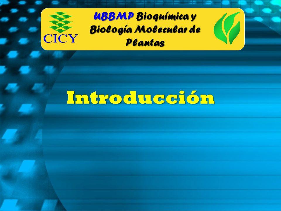 UBBMP Bioquímica y Biología Molecular de Plantas Introducción