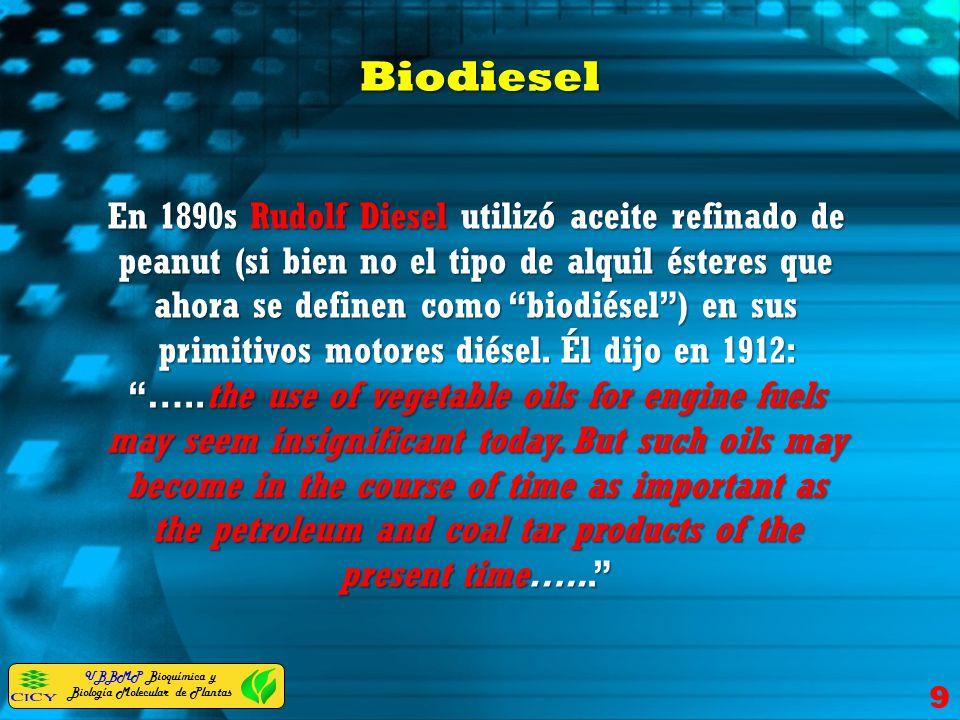 UBBMP Bioquímica y Biología Molecular de Plantas Biodiesel 9 En 1890s Rudolf Diesel utilizó aceite refinado de peanut (si bien no el tipo de alquil és
