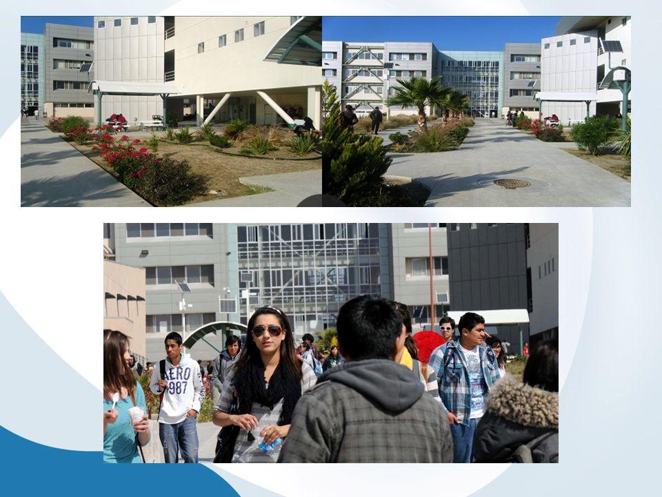 Contexto El programa se realiza atendiendo a la población universitaria, aunque se desempeñan funciones distintas.