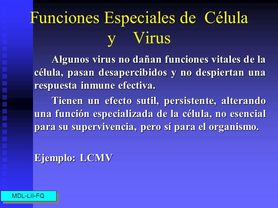 Funciones Especiales de Célula y Virus Algunos virus no dañan funciones vitales de la célula, pasan desapercibidos y no despiertan una respuesta inmune efectiva.