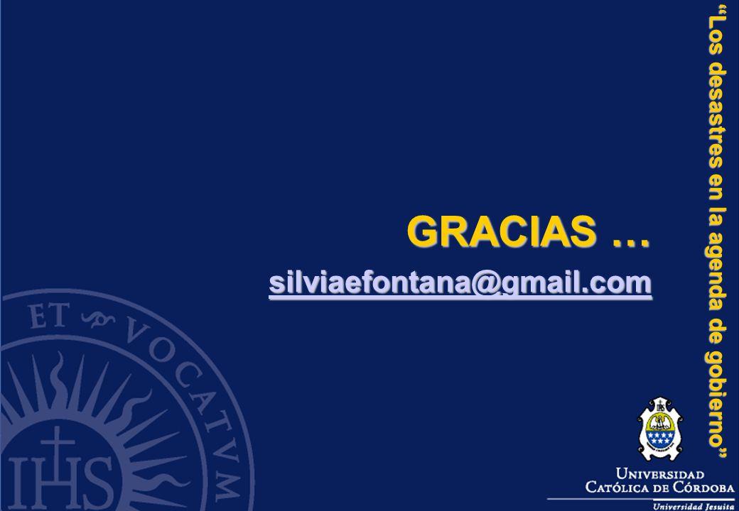 GRACIAS … silviaefontana@gmail.com Los desastres en la agenda de gobierno