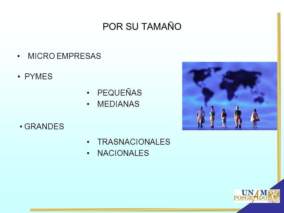 POR SU TAMAÑO MICRO EMPRESAS PYMES PEQUEÑAS MEDIANAS GRANDES TRASNACIONALES NACIONALES