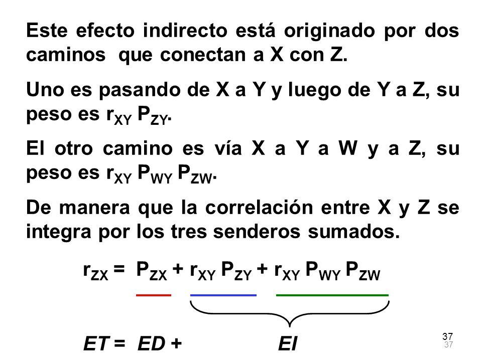 37 Este efecto indirecto está originado por dos caminos que conectan a X con Z. Uno es pasando de X a Y y luego de Y a Z, su peso es r XY P ZY. El otr