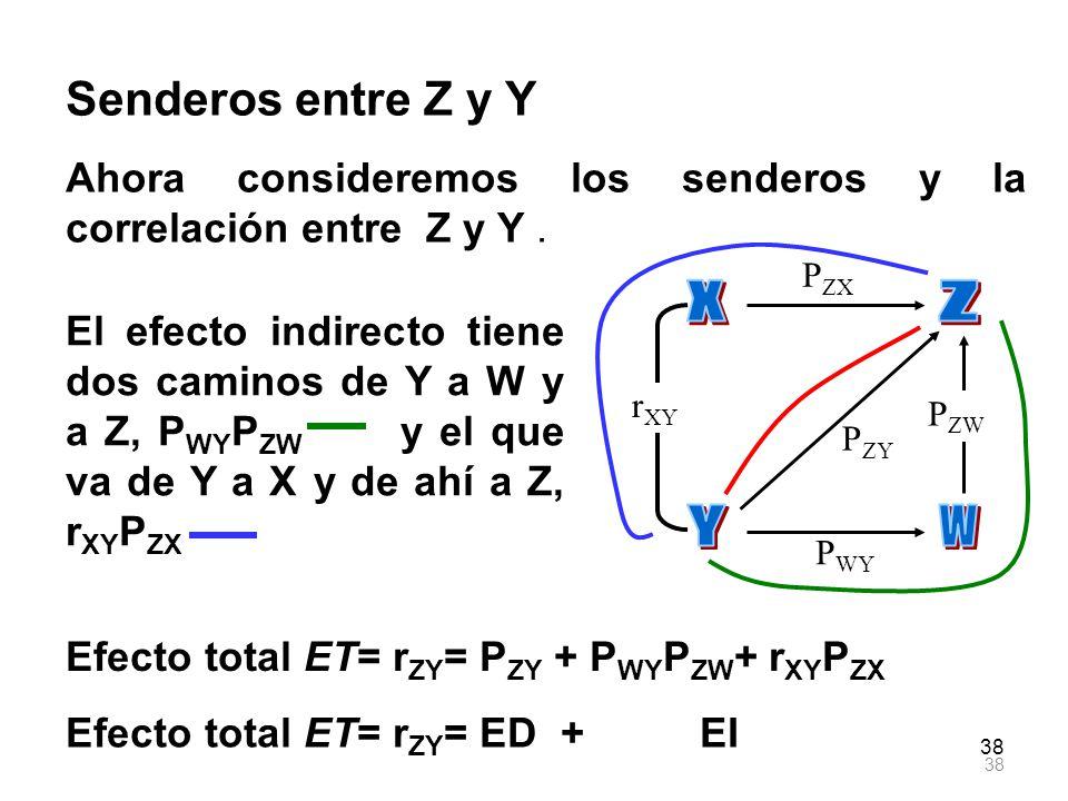 38 r XY P ZX P ZY P WY P ZW Senderos entre Z y Y Ahora consideremos los senderos y la correlación entre Z y Y. El efecto indirecto tiene dos caminos d