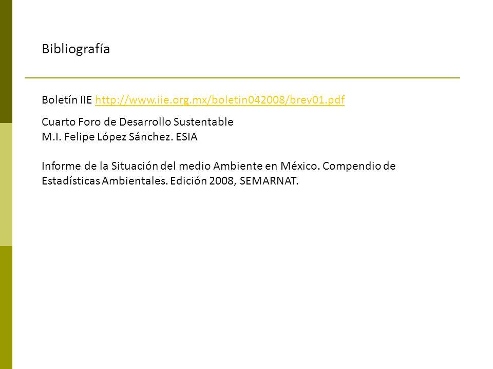 Bibliografía Boletín IIE http://www.iie.org.mx/boletin042008/brev01.pdfhttp://www.iie.org.mx/boletin042008/brev01.pdf Cuarto Foro de Desarrollo Susten