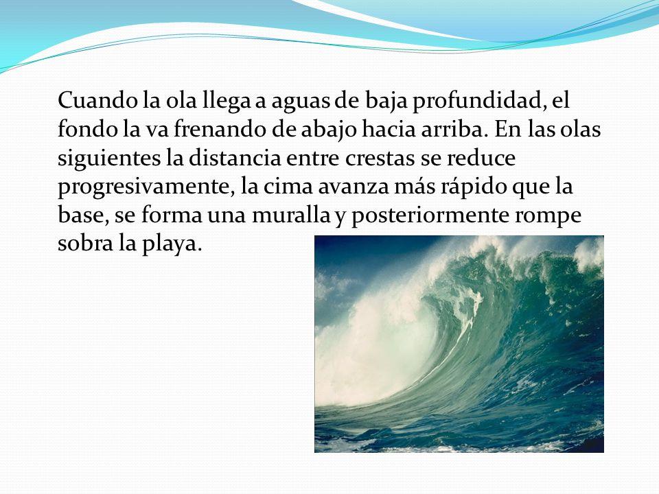 Cuando la ola llega a aguas de baja profundidad, el fondo la va frenando de abajo hacia arriba. En las olas siguientes la distancia entre crestas se r