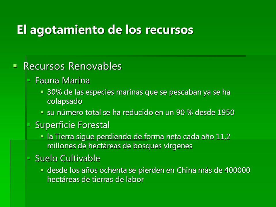 El agotamiento de los recursos Recursos Renovables Recursos Renovables Fauna Marina Fauna Marina 30% de las especies marinas que se pescaban ya se ha