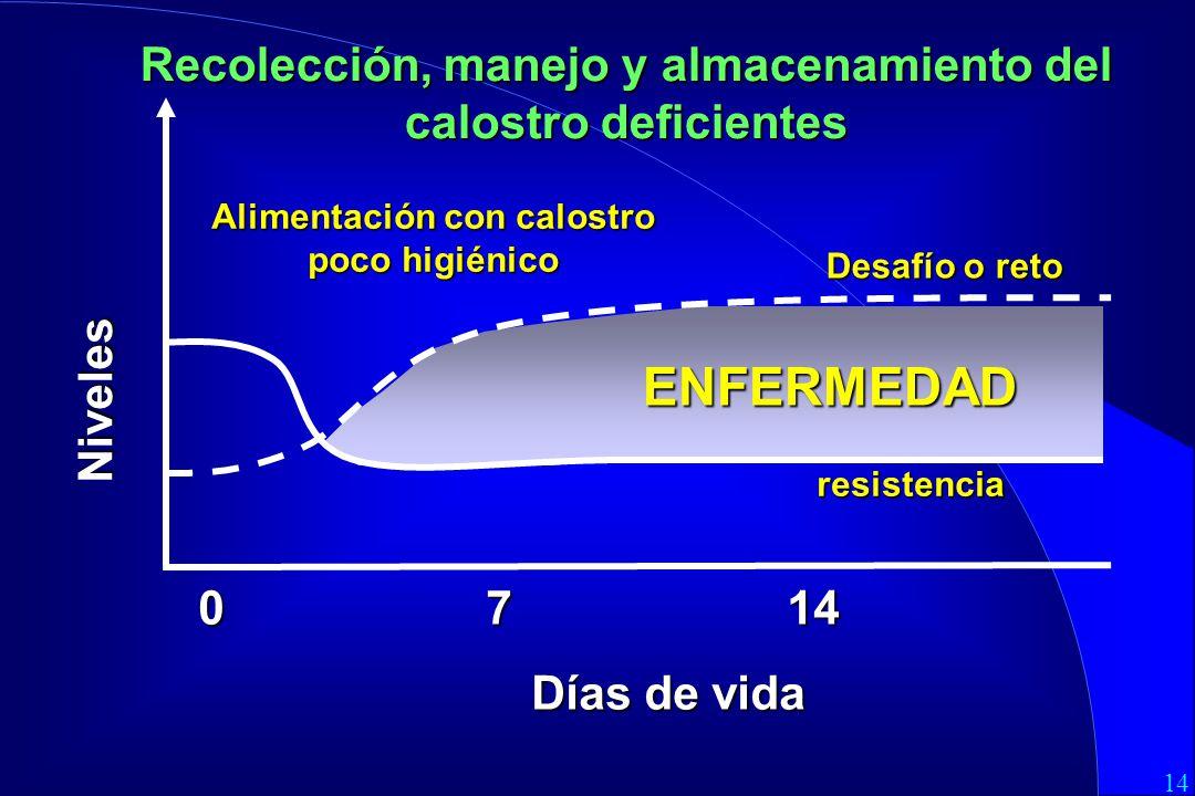 14 0 7 14 Días de vida Alimentación con calostro poco higiénico Desafío o reto ENFERMEDAD Niveles resistencia Recolección, manejo y almacenamiento del calostro deficientes
