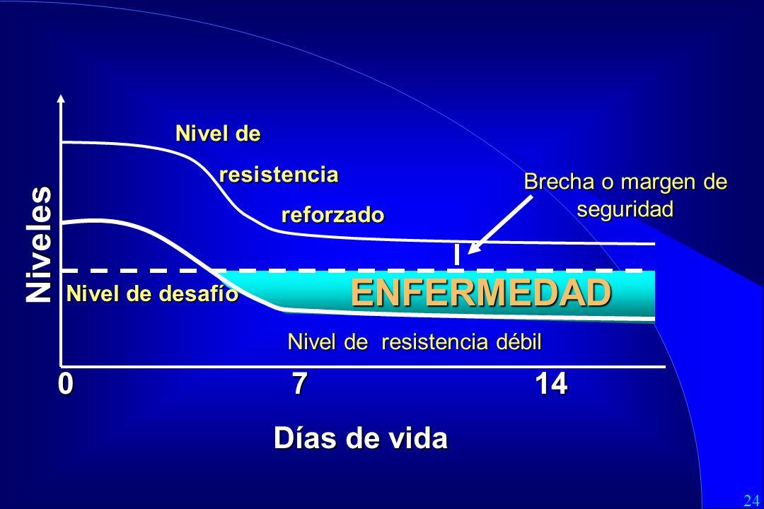 24 0 7 14 Días de vida Nivel de resistencia resistencia reforzado reforzado Brecha o margen de seguridad Nivel de desafío Niveles ENFERMEDAD Nivel de resistencia débil