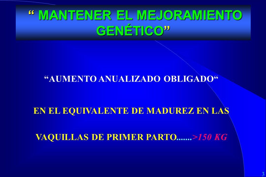 3 MEJORAMIENTO GENETICO AUMENTO ANUALIZADO OBLIGADO EN EL EQUIVALENTE DE MADUREZ EN LAS VAQUILLAS DE PRIMER PARTO.......>150 KG MANTENER EL MEJORAMIENTO GENÉTICO MANTENER EL MEJORAMIENTO GENÉTICO
