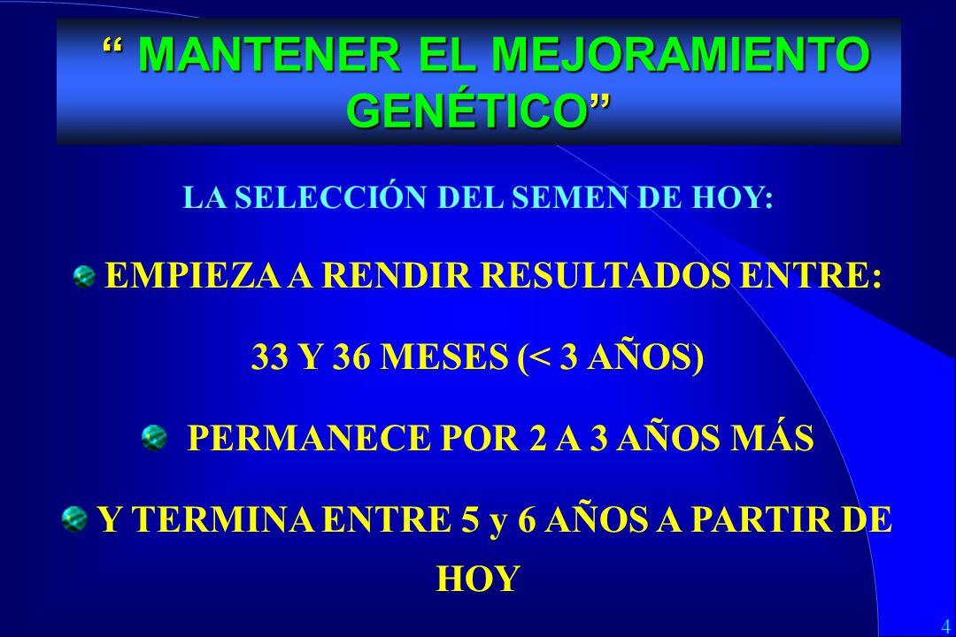 4 MEJORAMIENTO GENETICO LA SELECCIÓN DEL SEMEN DE HOY: EMPIEZA A RENDIR RESULTADOS ENTRE: 33 Y 36 MESES (< 3 AÑOS) PERMANECE POR 2 A 3 AÑOS MÁS Y TERMINA ENTRE 5 y 6 AÑOS A PARTIR DE HOY MANTENER EL MEJORAMIENTO GENÉTICO MANTENER EL MEJORAMIENTO GENÉTICO
