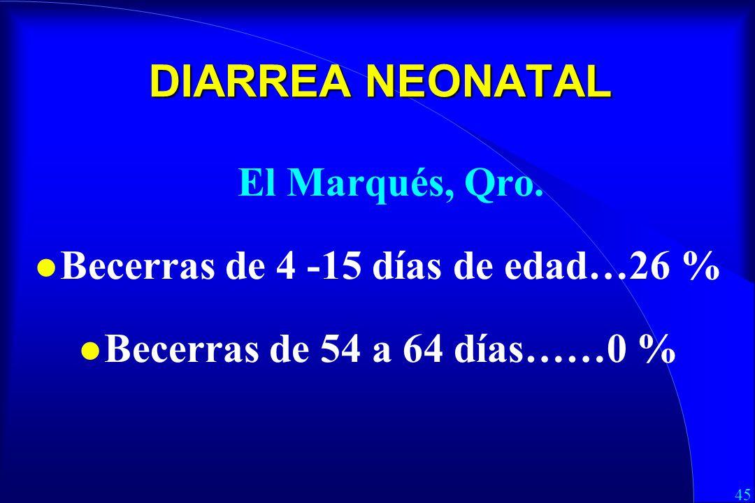 45 DIARREA NEONATAL El Marqués, Qro.