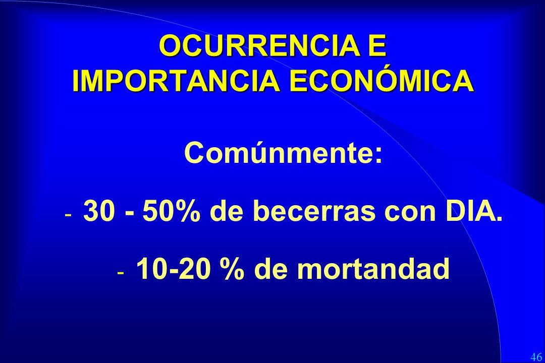 46 OCURRENCIA E IMPORTANCIA ECONÓMICA Comúnmente: - 30 - 50% de becerras con DIA.
