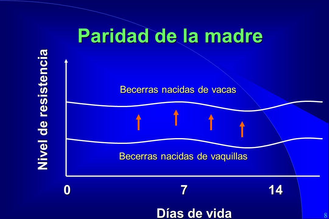 8 0714 Días de vida Paridad de la madre Becerras nacidas de vacas Nivel de resistencia Becerras nacidas de vaquillas