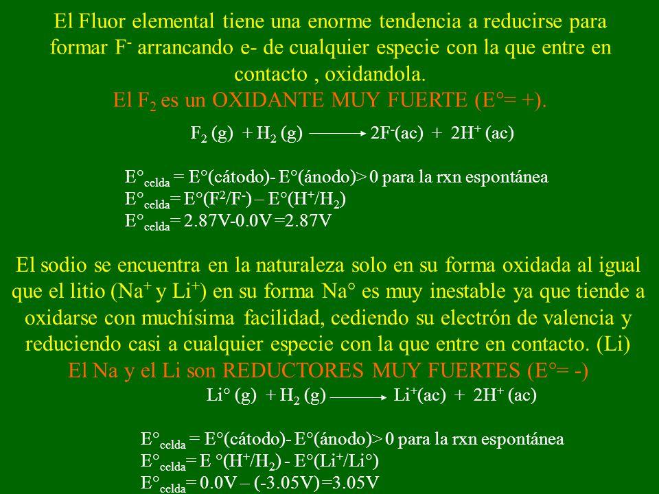 El sodio se encuentra en la naturaleza solo en su forma oxidada al igual que el litio (Na + y Li + ) en su forma Na° es muy inestable ya que tiende a oxidarse con muchísima facilidad, cediendo su electrón de valencia y reduciendo casi a cualquier especie con la que entre en contacto.