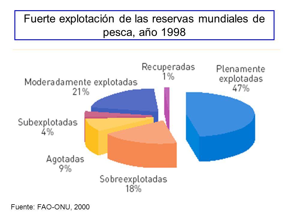 Fuerte explotación de las reservas mundiales de pesca, año 1998 Fuente: FAO-ONU, 2000