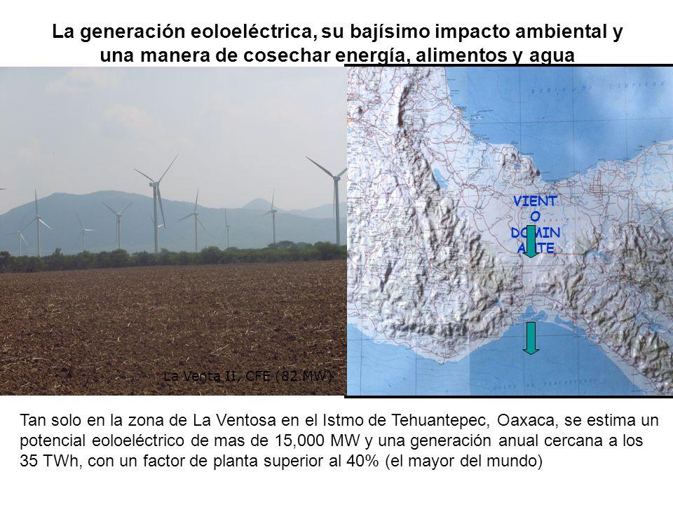 La generación eoloeléctrica, su bajísimo impacto ambiental y una manera de cosechar energía, alimentos y agua VIENT O DOMIN ANTE Tan solo en la zona d