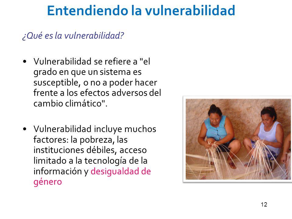 12 Entendiendo la vulnerabilidad ¿Qué es la vulnerabilidad? Vulnerabilidad se refiere a