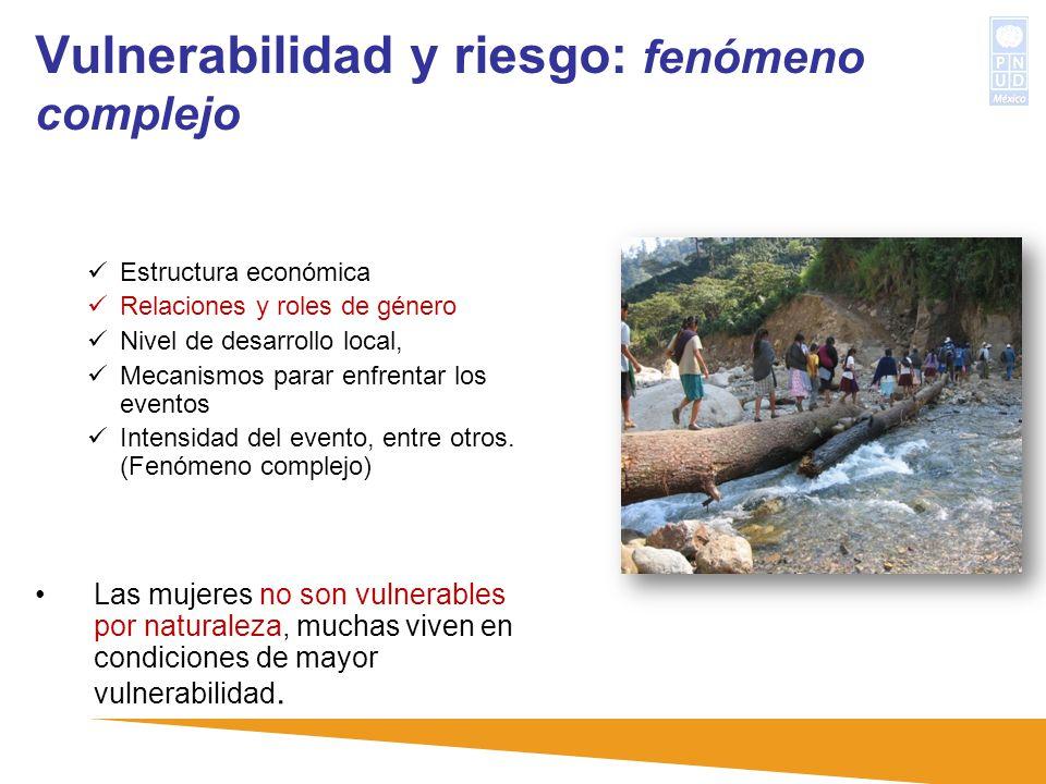 Vulnerabilidad y riesgo: fenómeno complejo Estructura económica Relaciones y roles de género Nivel de desarrollo local, Mecanismos parar enfrentar los
