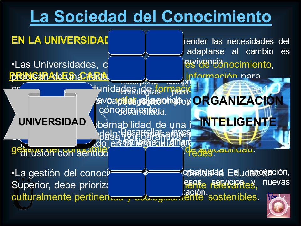 La Organización Universitaria por si misma no es fiel a sus propósitos misionales sin una estructura que soporte sus líneas de acción y genere sinergias entre sus equipos funcionales.