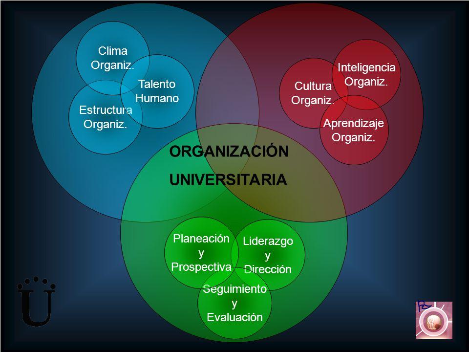 Cultura Organiz. Inteligencia Organiz. Aprendizaje Organiz. Liderazgo y Dirección Seguimiento y Evaluación Planeación y Prospectiva Estructura Organiz