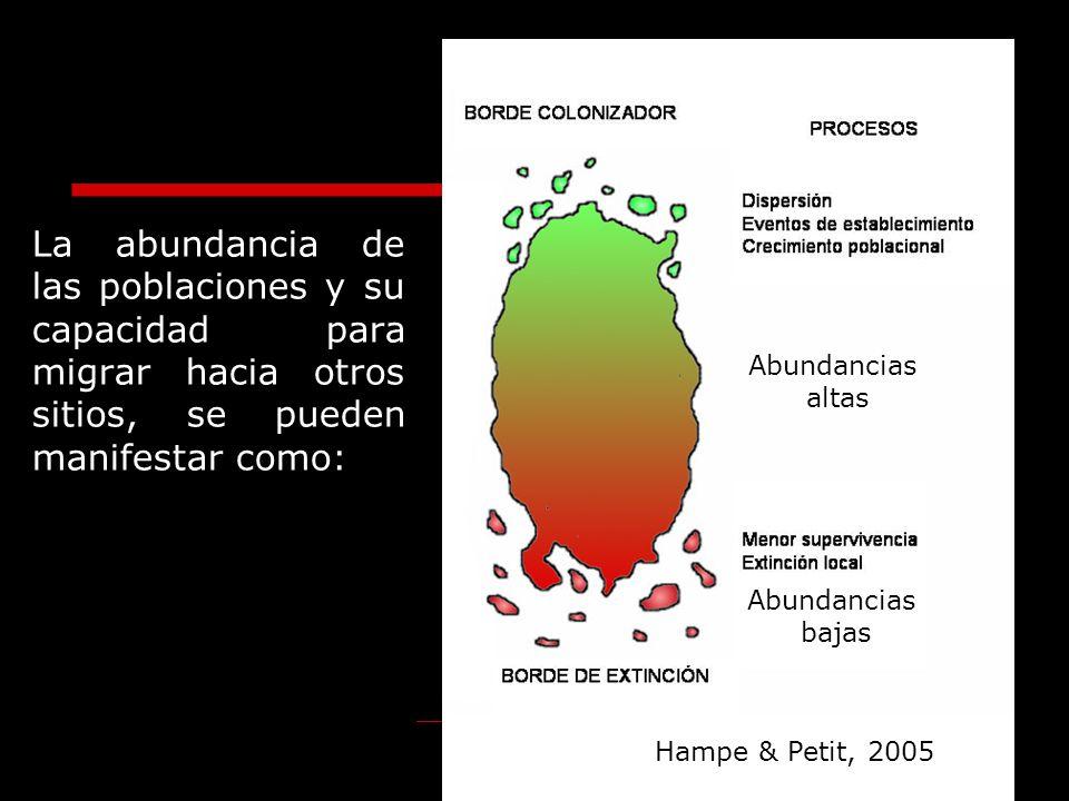 La abundancia de las poblaciones y su capacidad para migrar hacia otros sitios, se pueden manifestar como: Hampe & Petit, 2005 Abundancias altas Abund