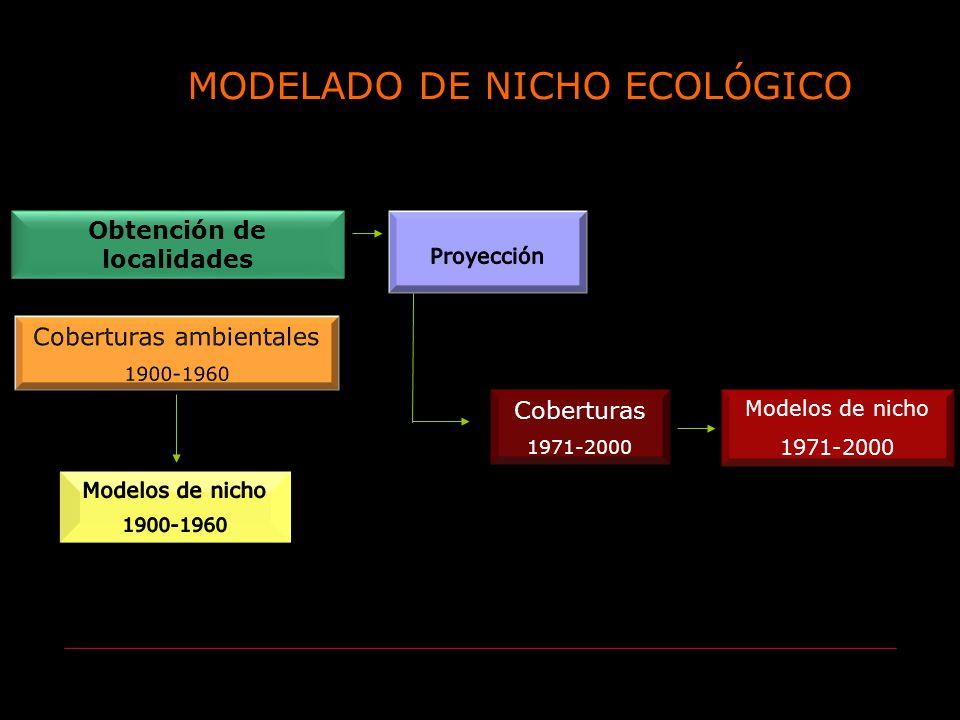 Obtención de localidades Coberturas 1971-2000 Modelos de nicho 1971-2000 MODELADO DE NICHO ECOLÓGICO