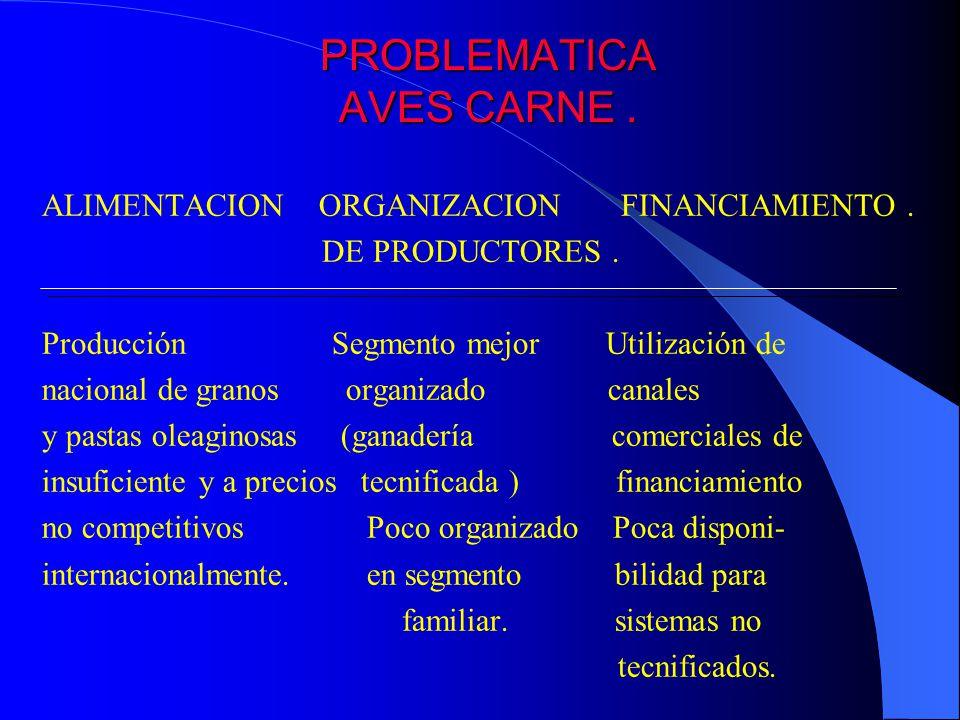 PROBLEMATICA AVES CARNE. ALIMENTACION ORGANIZACION FINANCIAMIENTO. DE PRODUCTORES. Producción Segmento mejor Utilización de nacional de granos organiz
