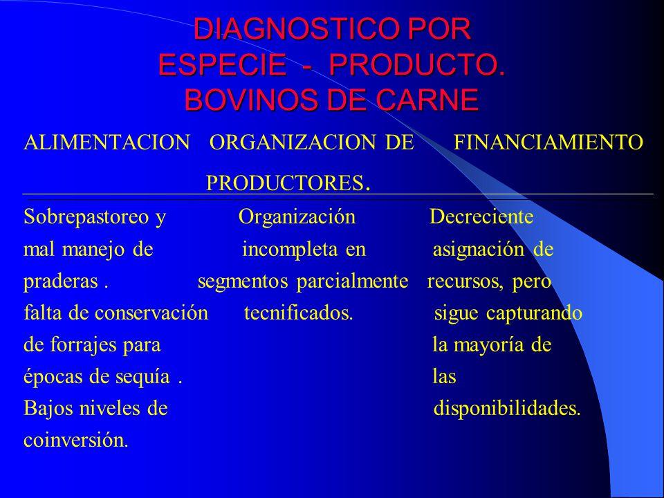 DIAGNOSTICO POR ESPECIE - PRODUCTO. BOVINOS DE CARNE ALIMENTACION ORGANIZACION DE FINANCIAMIENTO PRODUCTORES. Sobrepastoreo y Organización Decreciente