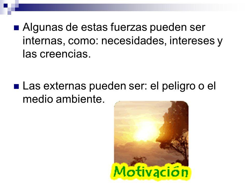 Las personas pueden ser motivadas por creencias, valores, intereses, miedos, entre otras causas o fuerzas.