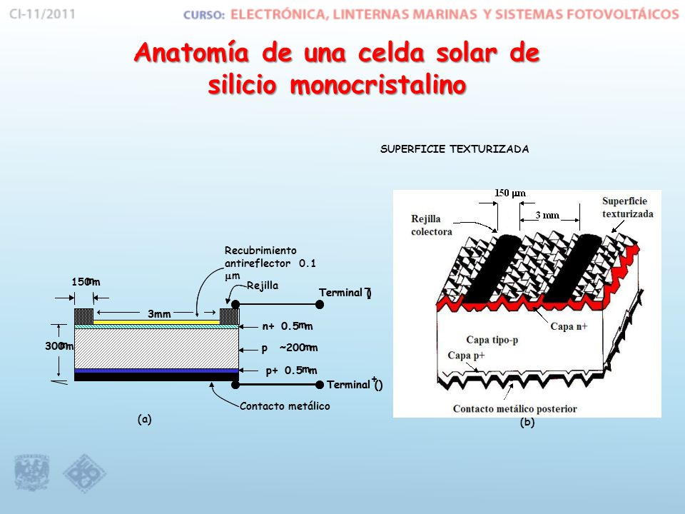 Anatomía de una celda solar de silicio monocristalino SUPERFICIE TEXTURIZADA