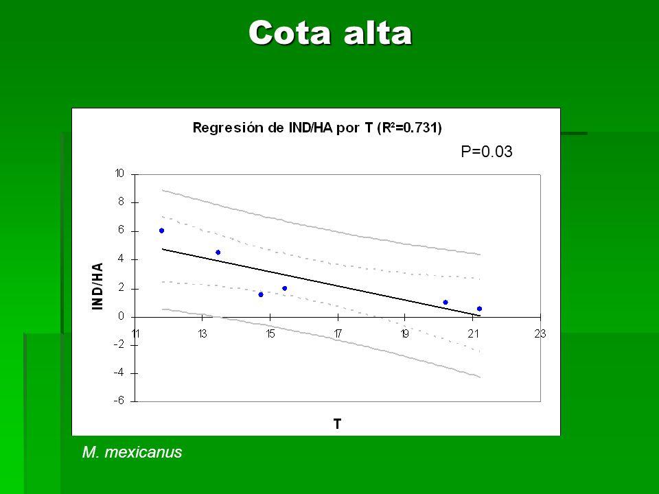 Cota alta M. mexicanus P=0.03