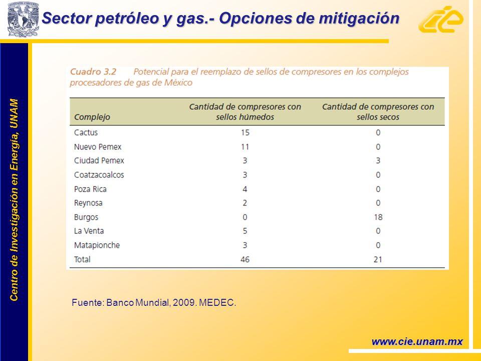 Centro de Investigación en Energía, UNAM Centro de Investigación en Energía, UNAM www.cie.unam.mx Sector petróleo y gas.- Opciones de mitigación Fuente: Banco Mundial, 2009.