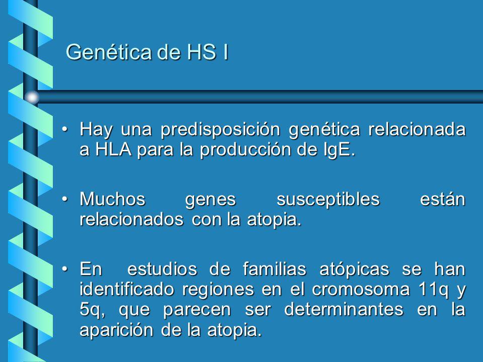 Genética de HS I Hay una predisposición genética relacionada a HLA para la producción de IgE.Hay una predisposición genética relacionada a HLA para la
