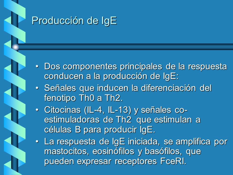 Producción de IgE Dos componentes principales de la respuesta conducen a la producción de IgE:Dos componentes principales de la respuesta conducen a l