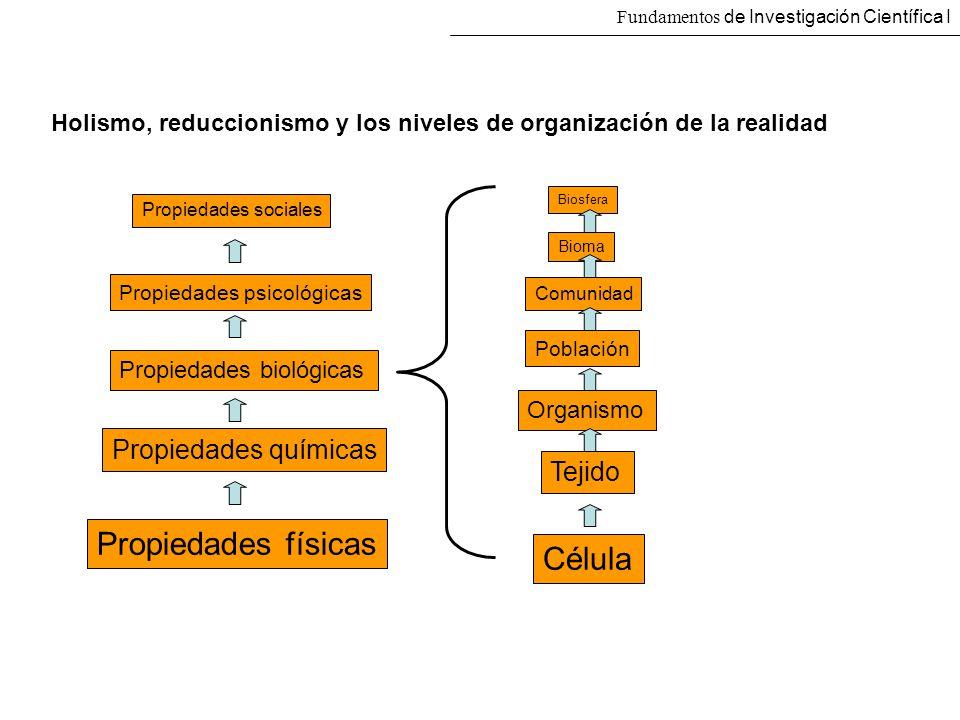 Fundamentos de Investigación Científica I Holismo, reduccionismo y los niveles de organización de la realidad Propiedades físicas Propiedades químicas