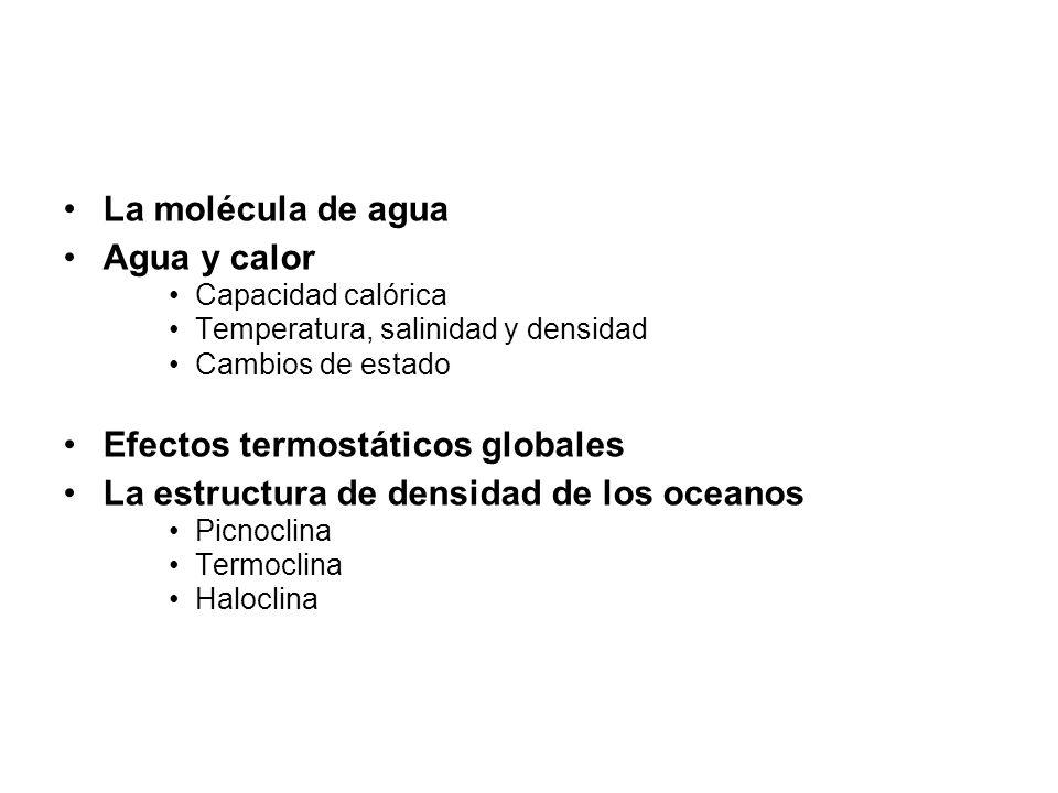 La molécula de agua Agua y calor Capacidad calórica Temperatura, salinidad y densidad Cambios de estado Efectos termostáticos globales La estructura de densidad de los oceanos Picnoclina Termoclina Haloclina