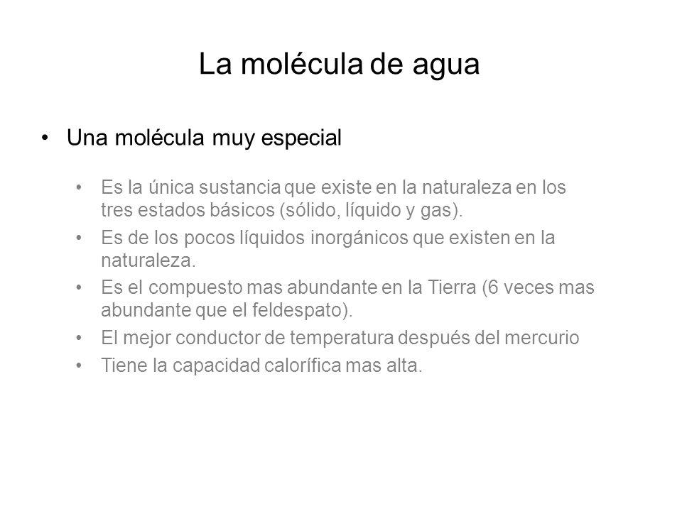 La molécula de agua Una molécula muy especial Es la única sustancia que existe en la naturaleza en los tres estados básicos (sólido, líquido y gas).