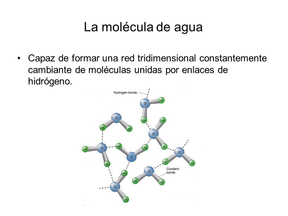 Las moléculas de agua cambian su organización…según su humor.