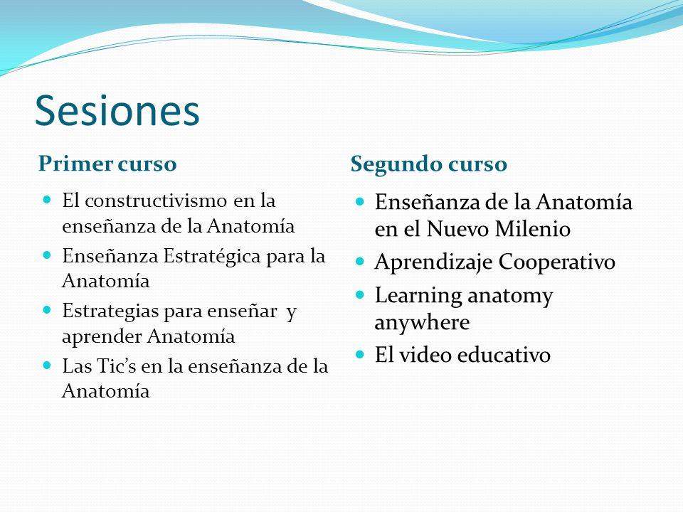 Sesiones Primer curso Segundo curso El constructivismo en la enseñanza de la Anatomía Enseñanza Estratégica para la Anatomía Estrategias para enseñar y aprender Anatomía Las Tics en la enseñanza de la Anatomía Enseñanza de la Anatomía en el Nuevo Milenio Aprendizaje Cooperativo Learning anatomy anywhere El video educativo