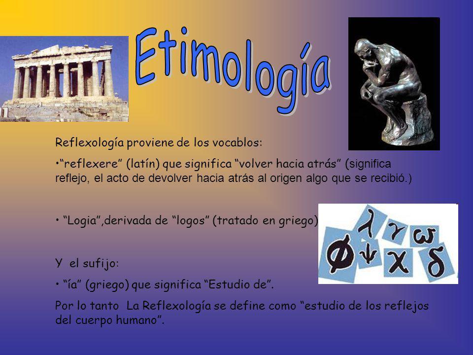 Reflexología proviene de los vocablos: reflexere (latín) que significa volver hacia atrás ( significa reflejo, el acto de devolver hacia atrás al orig